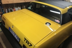 TR7 Coupe EU Version Baujahr 1979 Karosserie 2017 Lackpflege